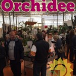 evento_orchidee_2016 (26)