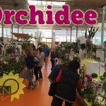 evento_orchidee_2016 (4)