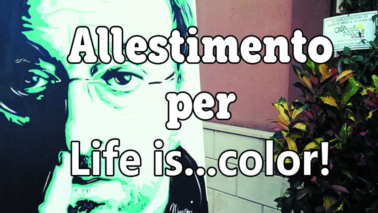Allestimento per Life is…color!